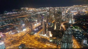 Dubia at night